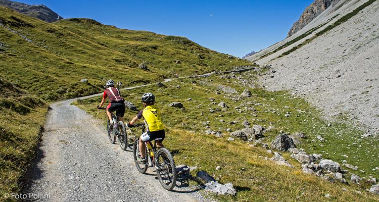 Giovane biker al al Passo di Val Alpisella