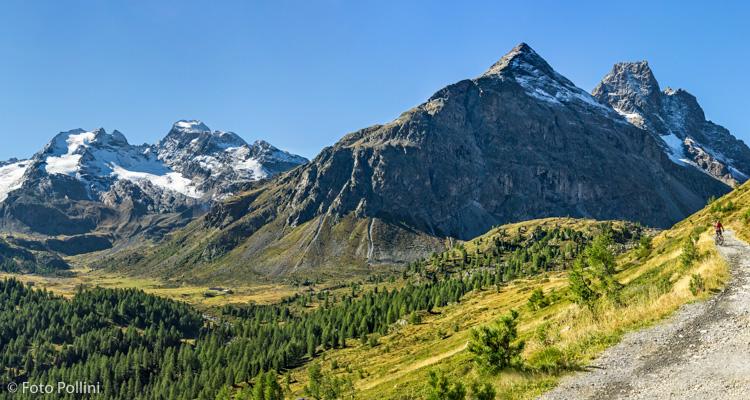 La strada della Val Viola. Sulla sinistra il Lago Spalmo la Cima Viola Il Corno Dosdè