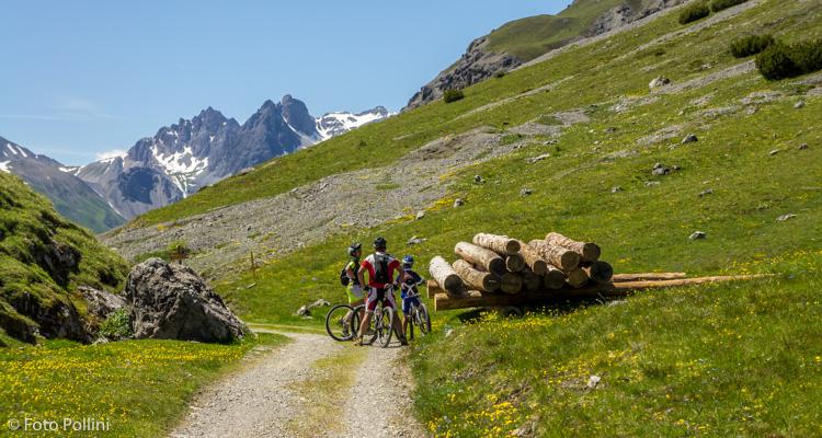 Passo della Val Alpisella