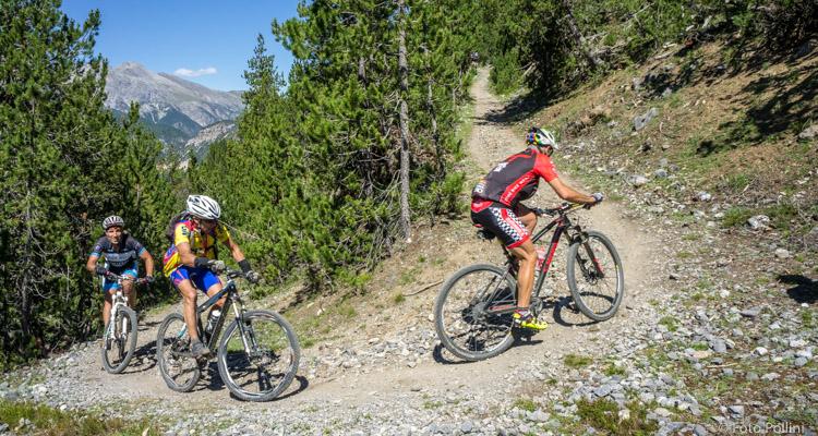 Salita all'Alpe del Gallo