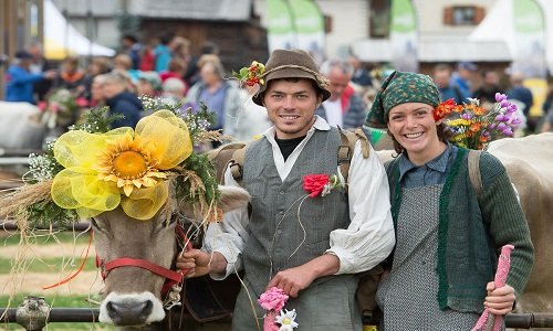 Mucche con ghirlande e contadini in costumi tipici: sono loro i protagonisti assoluti della transumanza in Valtellina