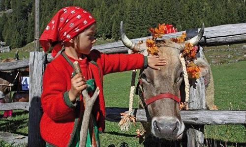 Transumanza in Valtellina: un'occasione anche per i più piccoli di trascorrere una giornata con gli animali