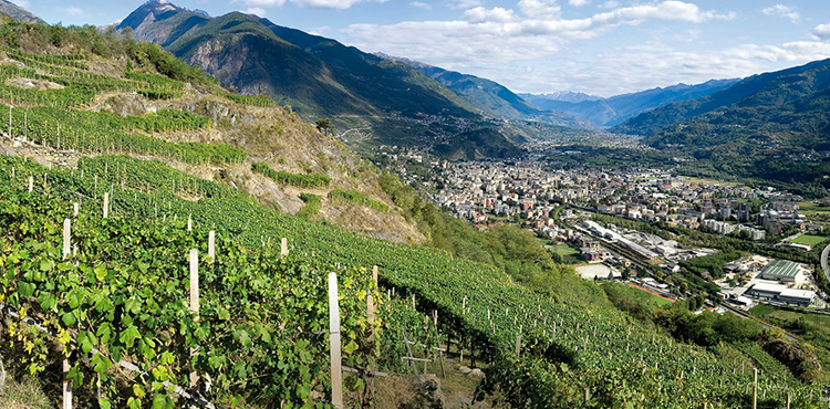 sondrio women The valtellina is a long narrow alpine valley on the rhaetian side of the alps in the province of sondrio at the wine stories the women black.